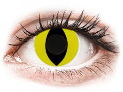 CRAZY LENS - Cat Eye Yellow - Ημερήσιοι φακοί Μη διοπτρικοί (2 φακοί)